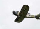 Branscombe Airshow_16