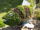 Sidmouth in Bloom_6