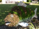 Sidmouth in Bloom_8