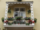 Sidmouth in Bloom_40