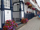 Sidmouth in Bloom_27