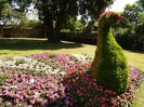 Sidmouth in Bloom_22
