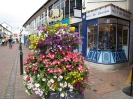 Sidmouth in Bloom_32