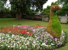 Sidmouth in Bloom_47