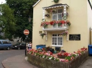 Sidmouth in Bloom_29
