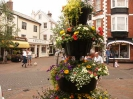 Sidmouth Scenes_169