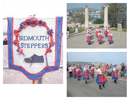 Sidmouth Steppers Image